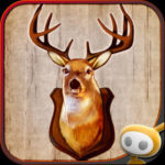 Deer Hunter Challenge